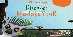 Madagascar at Chester Zoo