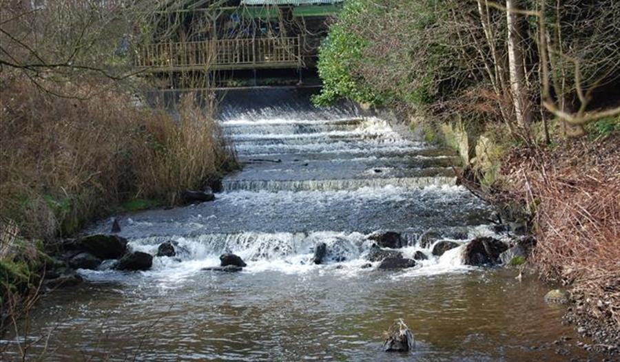 Macclesfield Riverside Park - Visit Cheshire