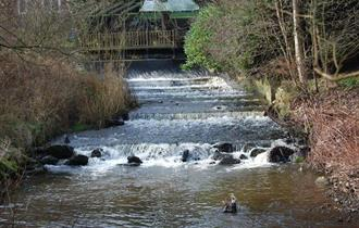Walks for All - Macclesfield Riverside
