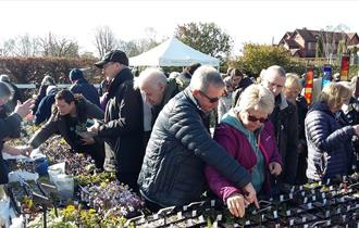Spring Plant Hunters' Fair at Ness Botanic Gardens
