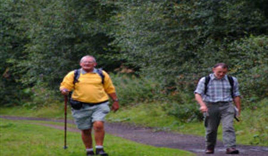 Walk The Trans Pennine Trail