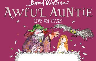 David Walliams' Awful Auntie - Live On Stage