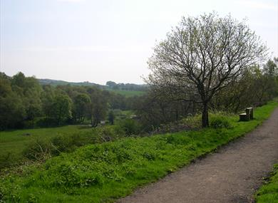 Ride the Biddulph Valley Way