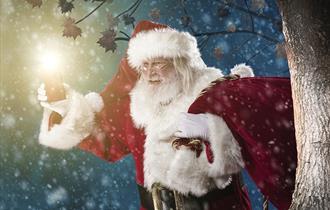 Blakemere's Christmas Woodland