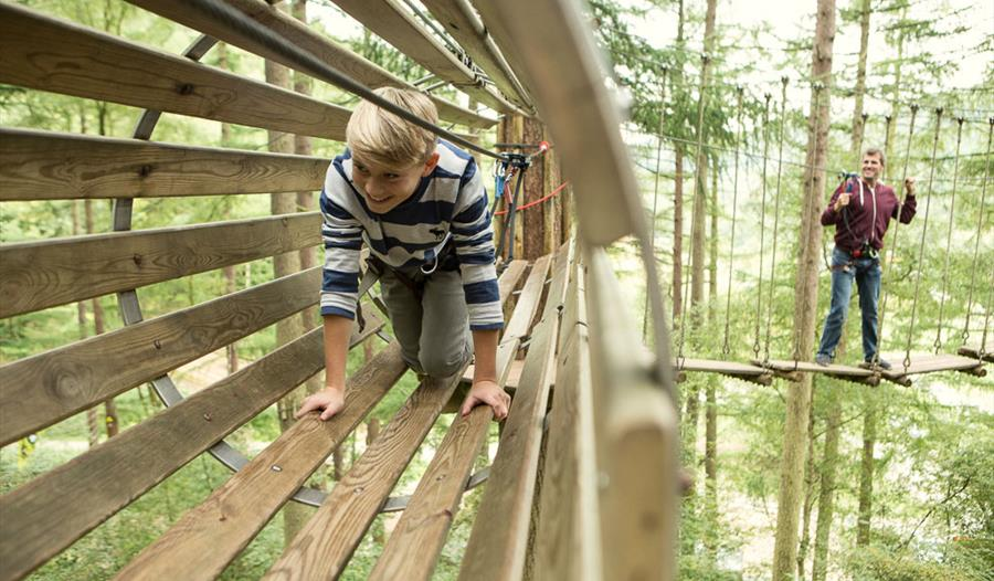 Go Ape Delamere Forest Adventure Park Playground In