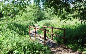 Walks for All - Caldy Valley Nature Park