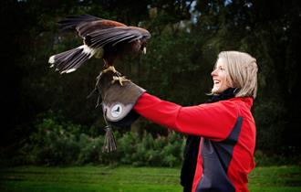Lisa having a fantastic time on her Meet the Birds experience