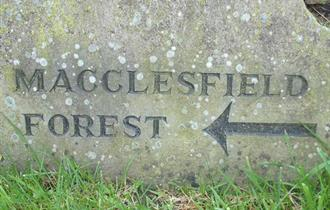 Teggs Nose & Macclesfield Forest 2