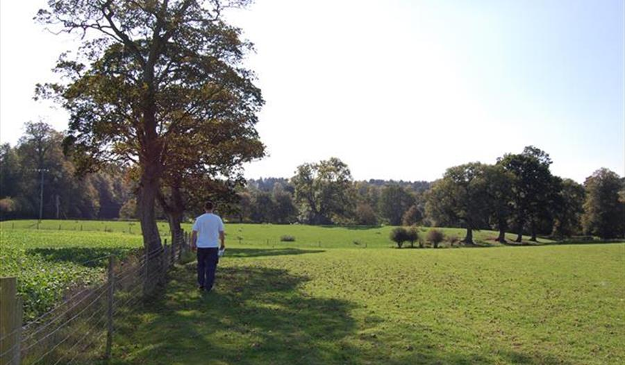 Haslington Conservation Walk