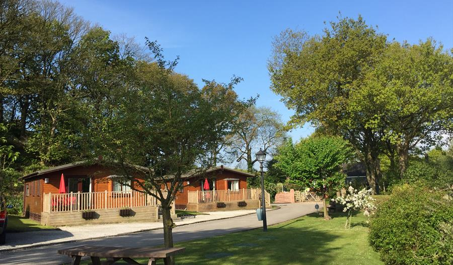 High-quality, fully-equipped caravans and lodges for hire at Ridgeway Country Holiday Park