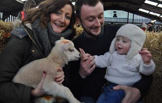 Reaseheath College Lambing and Zoo Weekends