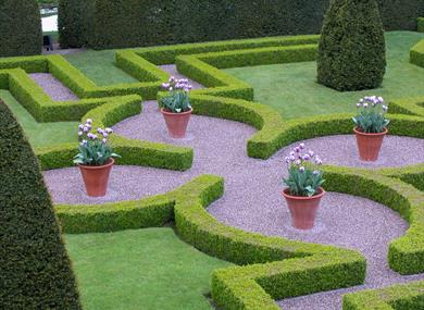 knot garden at Little Moreton Hall