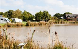 Manor Wood Country Caravan Park, an award winning park.
