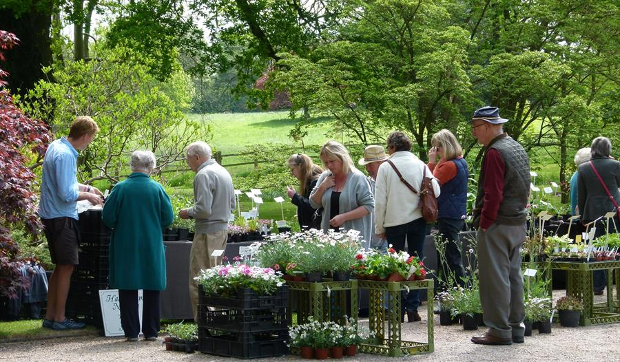 Specialist Plant Fair at at Cholmondeley Castle Gardens