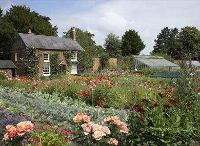 kitchen garden at rode hall gardens