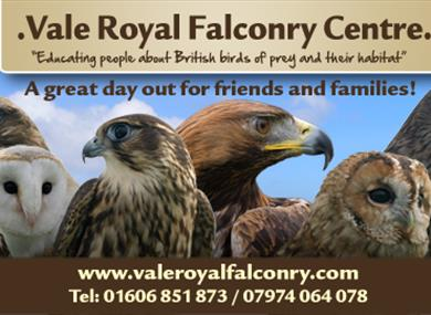 Vale Royal Falconry Centre