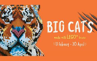 Big Cats: Made with LEGO Bricks