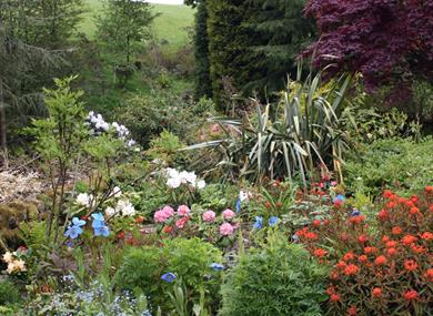 gardens at dunge valley